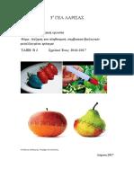 Αύξηση Του Πληθυσμού, Συμβατικά-βιολογικά-μεταλλαγμένα Τρόφιμα