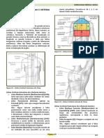 3 - Resumo Eduardo - Semiologia Do Tórax