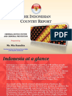Country Report of Indonesia