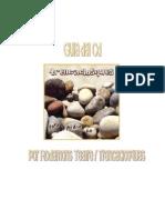 GUIA DIDÁCTICA TOTA PEDRA FA-CAST