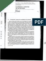 primates. Gil-Burmann_et_al_97.pdf