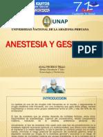 Expo_Anestesia en Obstetricia.pptx