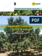 Boletín Agrometeorológico Mango_marzo2017