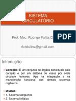 Sistema Circulatório - Fisioterapia