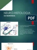 Neuro Histologia