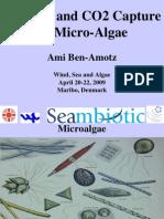 Ami Ben-Amotz WSA April 2009