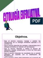 Power Point de Citologia