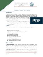 Informe de Caldero