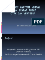 Anatomi Radiologi Normal SSP