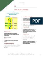 Fisologia Respiratoria Virtual PLUS Medica