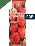 RP Produccion de Fresa