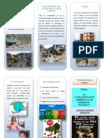 Triptico Contaminacion Ambiental