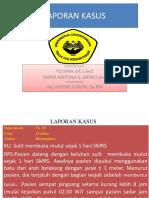 46421_LAPKAS
