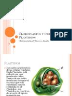 cloroplastosyotroplastidios-101105111007-phpapp01
