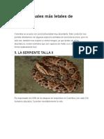 Los 5 Animales Más Letales de Colombia
