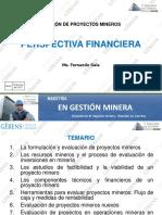 GESTION (2017) DE PROYECTOS MINEROS - PERSPECTIVA FINANCIERA.pdf