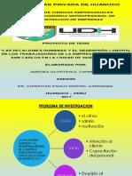 Diapositivas del articulo cientifico