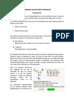 Arranque de Motores Trifasicos_Reporte