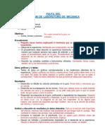 Pauta Informe y Presentacion