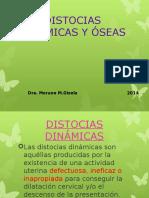 Distocias Dinámicas y Óseas