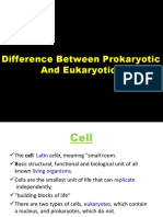 Prokaryotic & Eukaryotic Cell