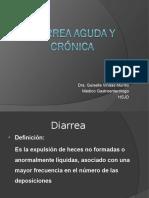 Diarreas Agudas y Cronica