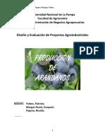 PRODUCCION DE ARANDANOS.pdf
