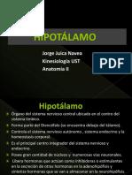 hipotlamo-121213003418-phpapp01.pptx