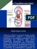 Sistema Cardiovascular(1)