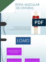 Distrofia Muscular de Cinturas Pedia