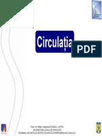 Materialul de Formare Circulatia