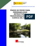2009 Protocolo Permeabilizacion Obstaculos