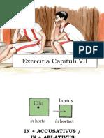 Exercitia Capituli VII