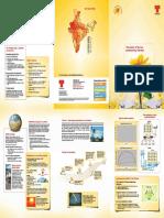 solar-brochure.pdf
