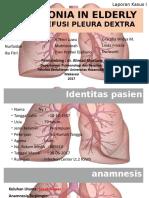 pulmo2