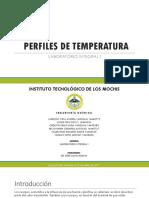 3.4 Perfil-de-temperaturas.pptx