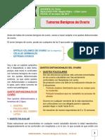 24. Tumores Benignos de Ovario 27.03.17.