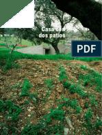 palomino.pdf