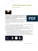 Aprovecha La Influencia de La Luna en La Huerta