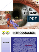 ojo-medio.ppt