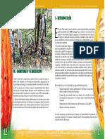 Manejo Integrado Cultivo de Cacao