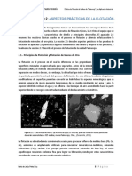 Cap2_AlgunosAspectosPracticosFlotacion_T.pdf