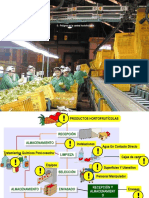 Inocuidad en Produccion Primaria Hortofruticola