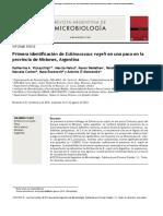 Echinococcus Vogeli en Una Cuniculos Paca