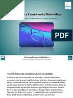 Tema 18. Sintesis de amino, hemo y nuecleotidos.pdf