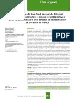 La riziculture de bas-fond au sud du Sénégal.pdf