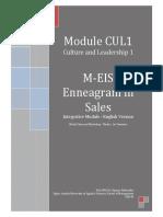 EIS-Enneagram-in-Sales-Hofstadler-Kopie.pdf