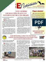 SBE Noticias 361