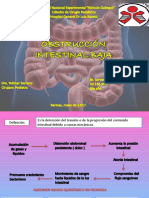 Obstruccion Intestinal Baja Cirugia Pediatrica