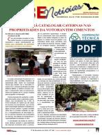 SBE Noticias 354